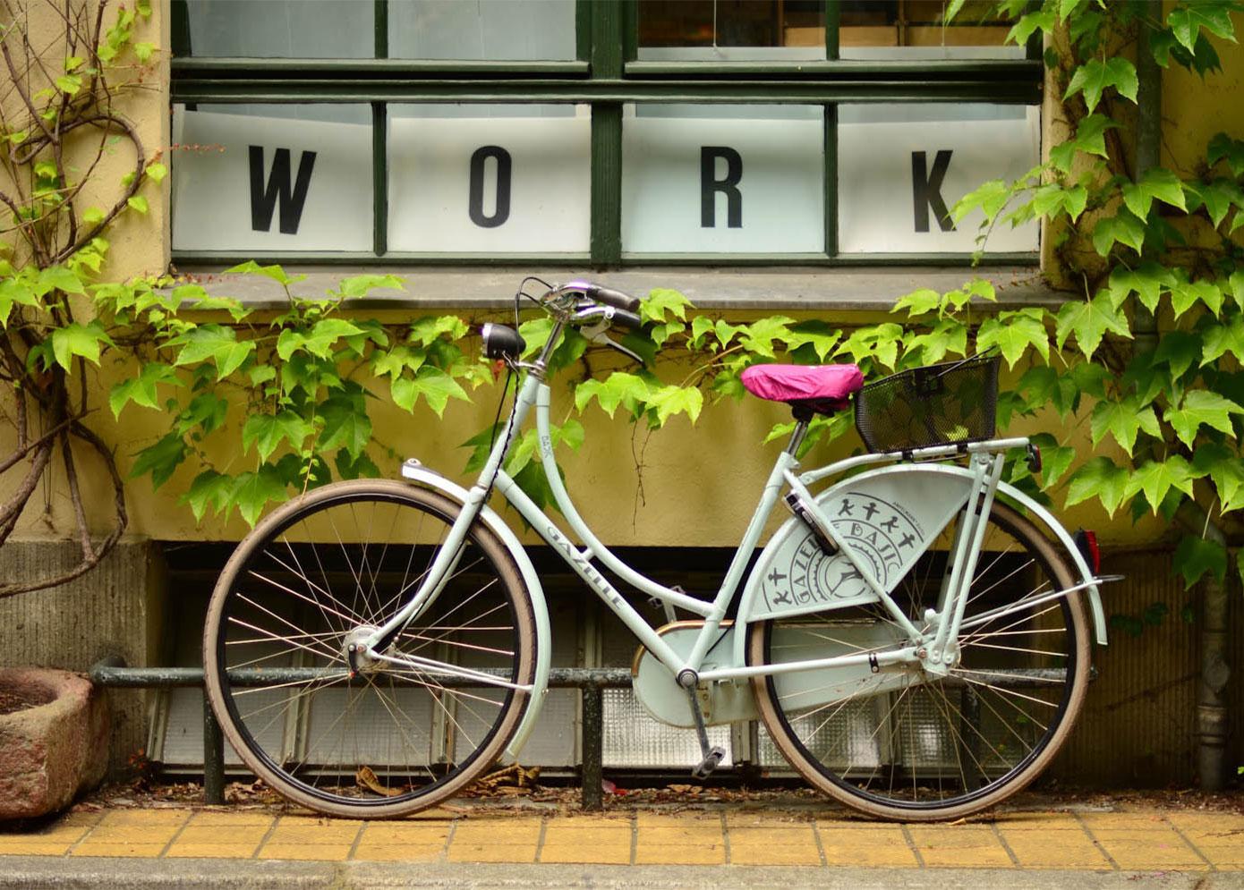 Groen Licht - Veldwerk - fiets - studentenbaan